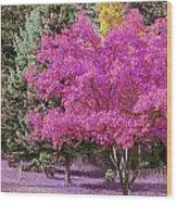 Violet Autumn Wood Print