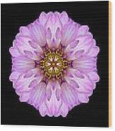 Violet Dahlia II Flower Mandala Wood Print