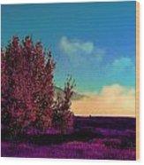 Violet Flats Wood Print