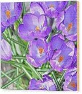 Violet Lilies Wood Print