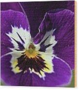 Violet Macro Wood Print