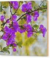 Violet Quince Wood Print
