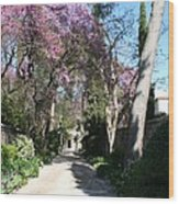 Violet Tree Alley Wood Print
