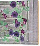 Violet Vine - Photopower 324 Wood Print