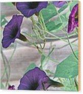 Violet Vine - Photopower 326 Wood Print
