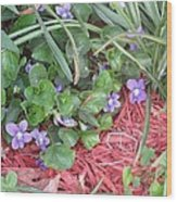 Violets Wood Print by Diane Mitchell