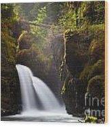 Virgin Creek Falls Wood Print by Chris Heitstuman