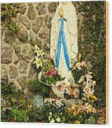 Virgin Mary Grotto Wood Print