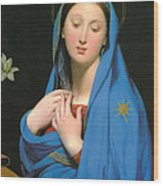 Virgin Of The Adoption Wood Print