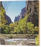 Virgin River In Zion National Park Wood Print