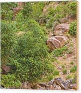 Virgin River - Utah Wood Print