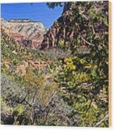 Virgin River View - Zion Wood Print