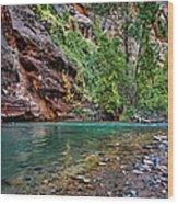 Virgin River Zion National Park Utah Wood Print