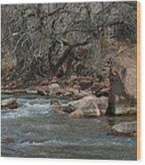 Virgin River Zion Park Wood Print