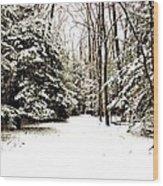 Virgin Snow Wood Print