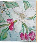 Virginia Dogwood Wood Print by Brenda Ruark