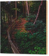 Virginia Morning Wood Print