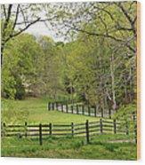 Virginia Spring Wood Print