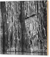 Vishnu Schist Wood Print by Inge Johnsson