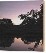 Vision In Purple Wood Print