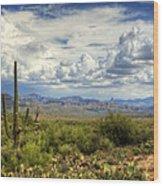 Visions Of Arizona  Wood Print by Saija  Lehtonen