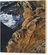 Visions Of Nature 5 Wood Print