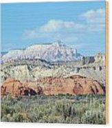 Visions Of Utah Wood Print
