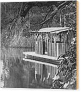 Visit To The Gator Hole Wood Print