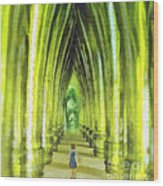 Visiting Emerald City Wood Print