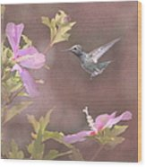 Visitor In The Rose Of Sharon Wood Print