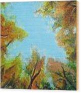 Vista Of The Past Wood Print