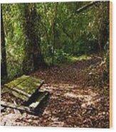 Vistas Of Los Quetzales Wood Print
