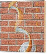 Vitamin C Wall Wood Print