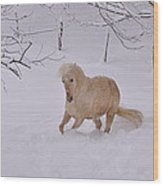Viva Zapata Contratercero Dances In The Snow Wood Print