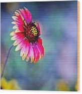 Vivid Colors Wood Print by Tammy Smith