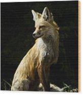 Vixen Fox   #4251 Wood Print