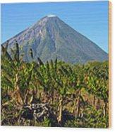 Volcan Concepcion Nicaragua Wood Print