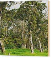 Volcano Ranch Wood Print