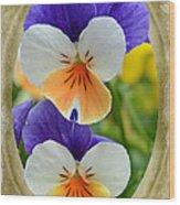 Volets Wood Print
