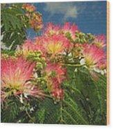 Voluntary Mimosa Tree Wood Print