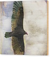 Vulture In Color Wood Print