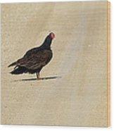 Vulture Road Wood Print