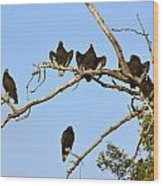 Vulture Tree Full Of Buzzards Wood Print