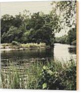 Waccamaw River Wood Print