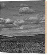 Wachusett Mountain Bw Wood Print