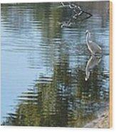 Wading Bird Wood Print