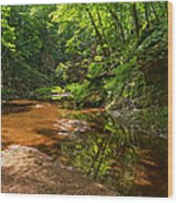 Wading In The Creek Wood Print