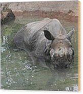 Wading Rhinos Wood Print