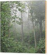 Waft Of Mist - Shenandoah Park Wood Print