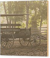 Wagon - Abe's Buggie Wood Print by Mike Savad